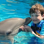 Boy kissing dolphins