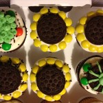 Sunflower cupcakes with Oreos and M&Ms