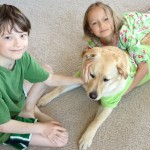 little boy and girl in pajamas with yellow dog in green shirt