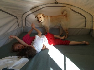 kids wrestling with dog in tent trailer
