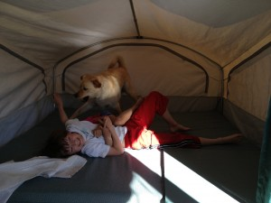 kids and dog wrestle in tent trailer