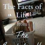 The Facts of Life from the Bachelorette