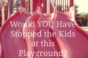 Would YOU Have Stopped the Kids at this Playground?