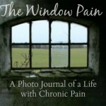 Life Through the Window Pain