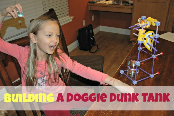 Building a Doggie Dunk Tank